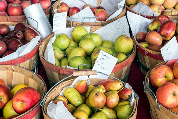 Pears and apples aplenty in Portland