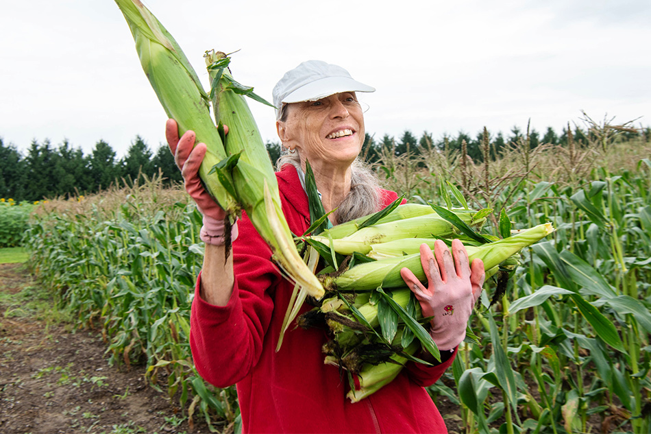 A woman holds corn in a garden