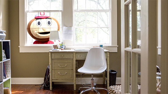 Brutus Buckeye in home office