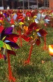 Be the change you wish to see in the world. Pinwheels in honor of organ donation outside Wexner Medical Center.