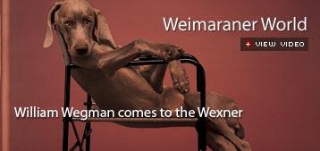william wegman comes to the wexner center