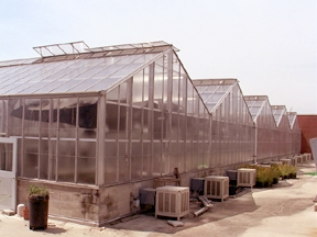 Biological Sciences Greenhouses external view