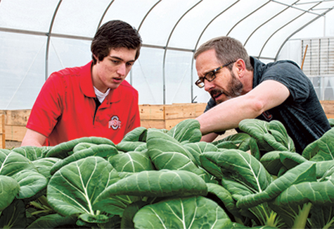 picture of two men looking at plants in a microfarm