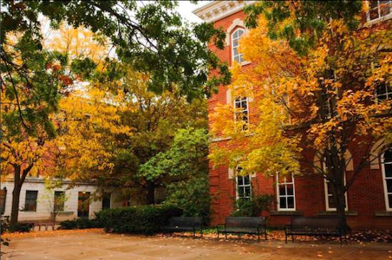 Fall leaves around Bricker Hall